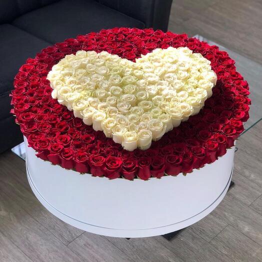 Огромная коробка 351 роза эквадор сердце