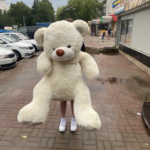 Медведь 2МЕТРА