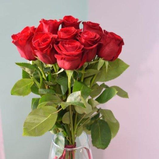 9 роз Фридом