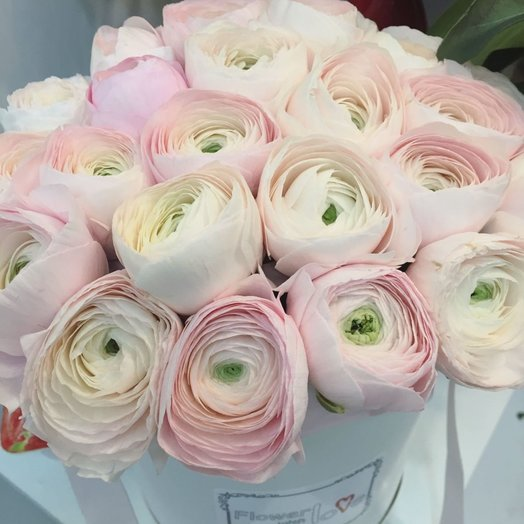 Монобукет из ранункулюсов в стильной шляпной коробке: букеты цветов на заказ Flowwow