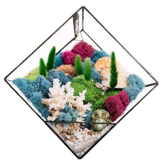 Моссариум с подсветкой STROMBUS OCEAN: букеты цветов на заказ Flowwow