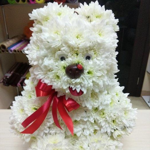 """Мишка из цветов """"Умка"""": букеты цветов на заказ Flowwow"""