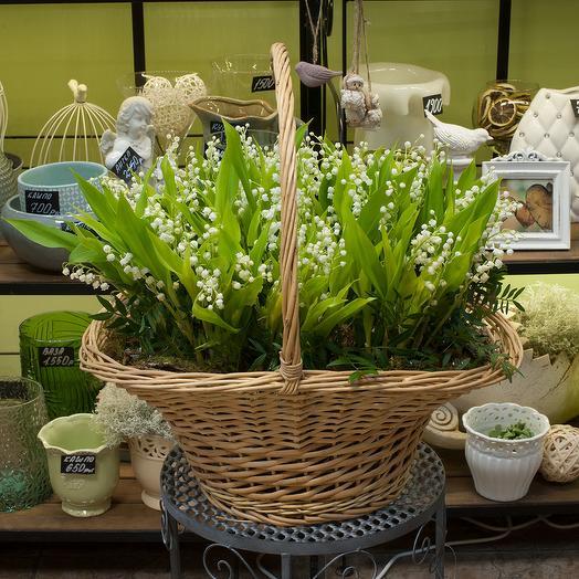 "Корзина ландышей ""Ландыши"": букеты цветов на заказ Flowwow"