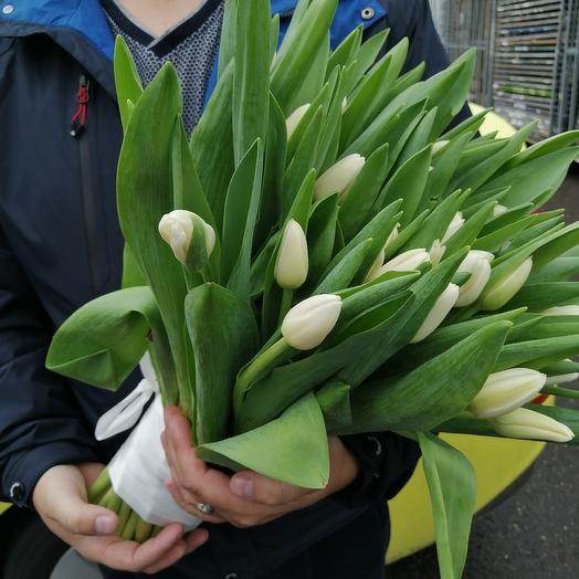 Букет из 49 белых тюльпанов: букеты цветов на заказ Flowwow