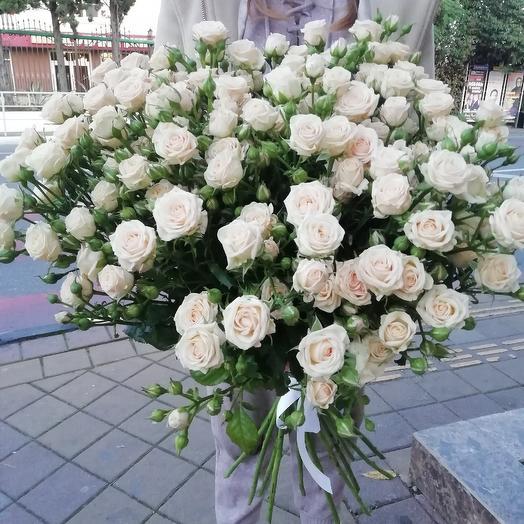 Роза сорта Яна: букеты цветов на заказ Flowwow