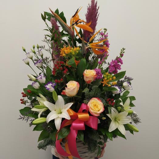 Корзина со стрелицией: букеты цветов на заказ Flowwow