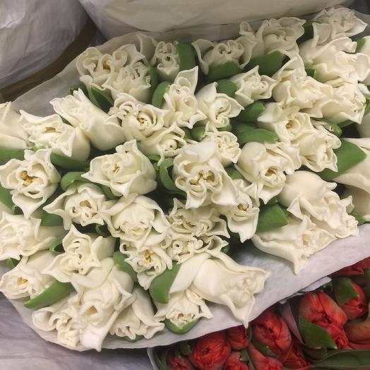 Тюльпаны поцелуйчики 50 шт: букеты цветов на заказ Flowwow