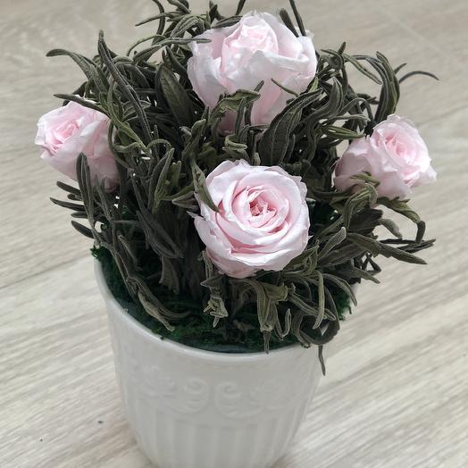 Розы нежно-розового цвета в листьях лаванды