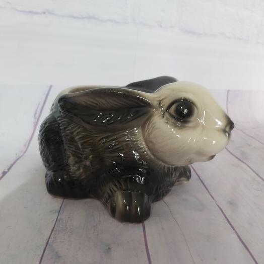 Pots Gray Bunny