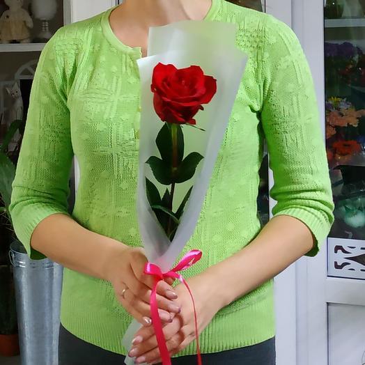 Роза 🌹
