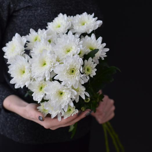 Lady Flowers - 3 махровые белые кустовые хризантемы