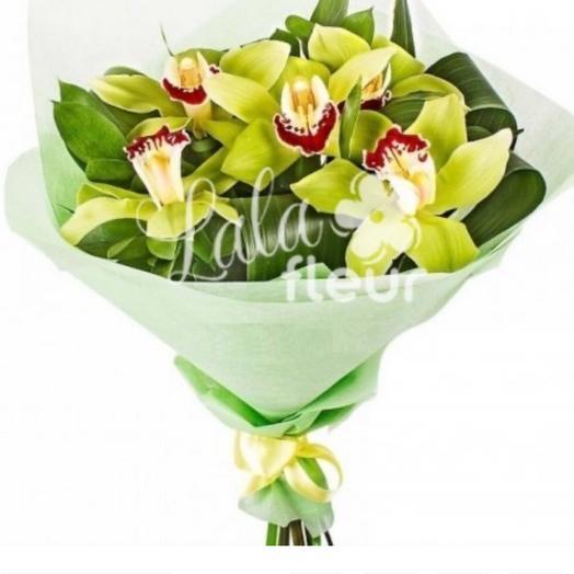 Фисташковые орхидеи