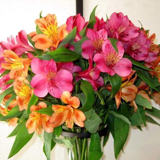 Альстромерии: букеты цветов на заказ Flowwow
