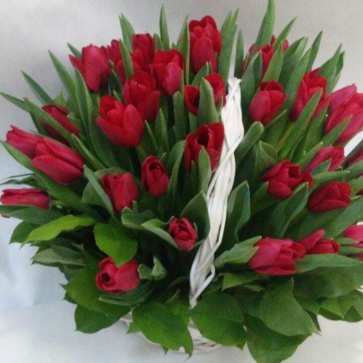 25 тюльпанов в корзинке