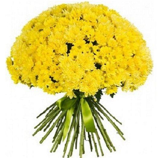 Букет из 31 желтой кустовой хризантемы: букеты цветов на заказ Flowwow