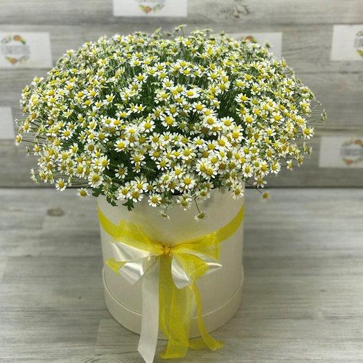 Коробки с цветами. Ромашки. N137: букеты цветов на заказ Flowwow