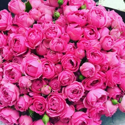 Розовый щербет