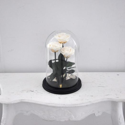 КОМПОЗИЦИЯ «ТРИО» 3 РОЗЫ В КОЛБЕ SNOW WHITE/БЕЛОСНЕЖКА: букеты цветов на заказ Flowwow