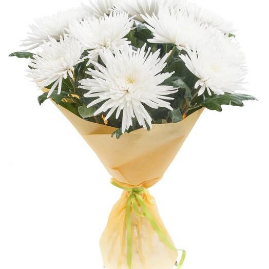 """Букет """"Хризантемы"""": букеты цветов на заказ Flowwow"""