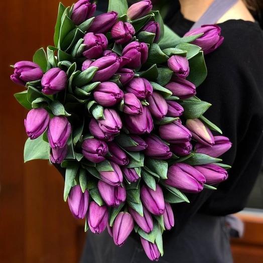 Королескии тюльпан