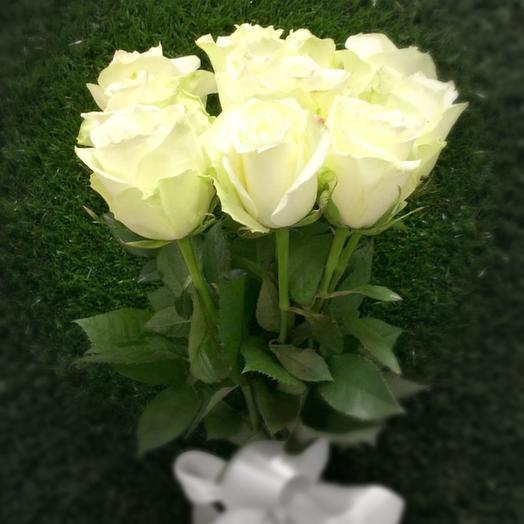 Амур белый (9)