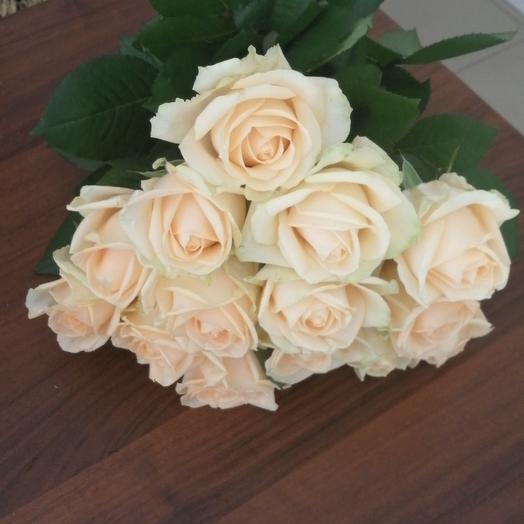 15 Чайная роза 50 см