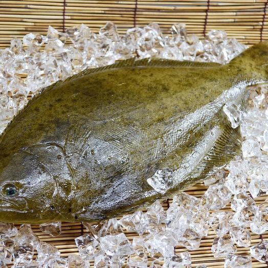 Камбала Черноморская 2,9 кг