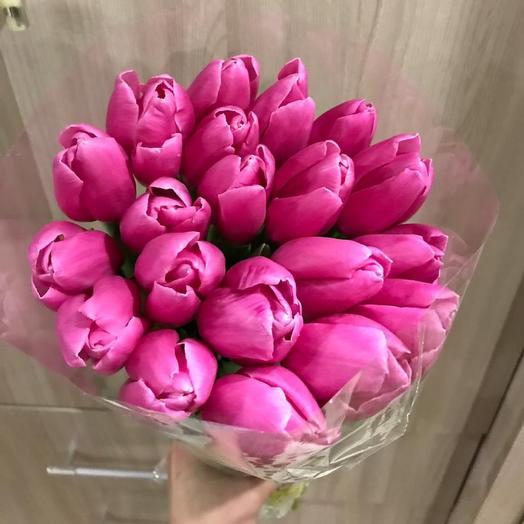 Малиновый тюльпан
