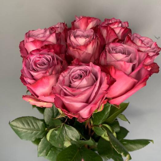 Монобукет 7 Фиолетовых роз 60см