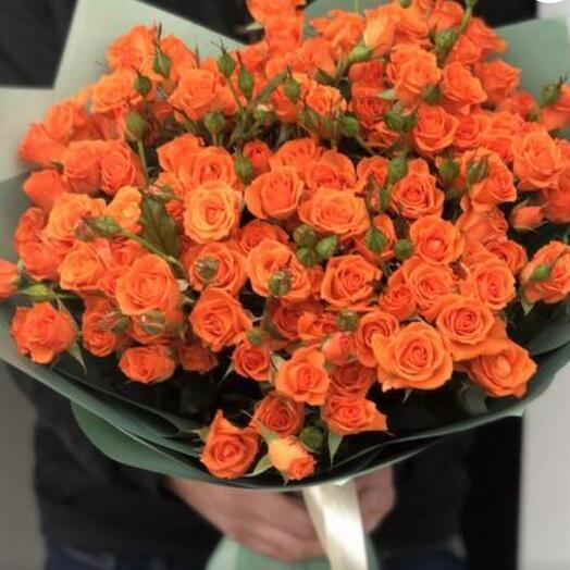 Оранжевый пучок