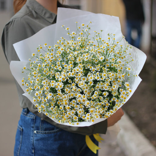 25 кустовых ромашек: букеты цветов на заказ Flowwow