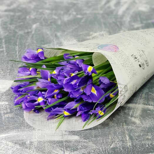 Букет из 15 ирисов в стильной упаковке: букеты цветов на заказ Flowwow