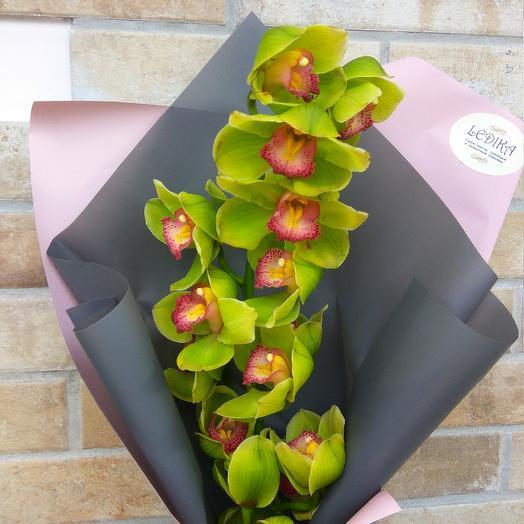 Волшебная орхидея: букеты цветов на заказ Flowwow