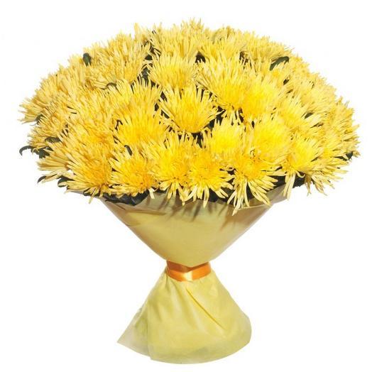 55 хризантем Anastasia: букеты цветов на заказ Flowwow