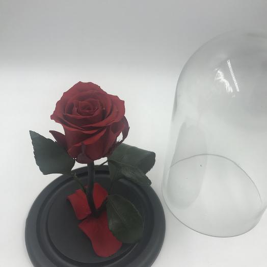 Красная роза в колбе MINI: букеты цветов на заказ Flowwow