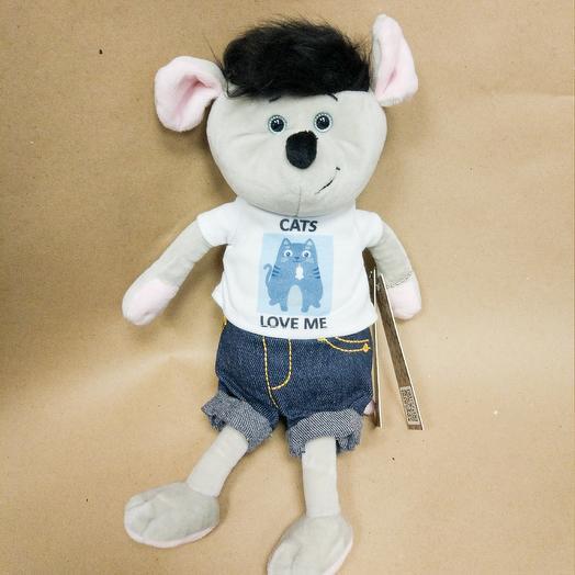 Мышь в джинсах: букеты цветов на заказ Flowwow