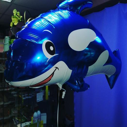 Дельфин фольга