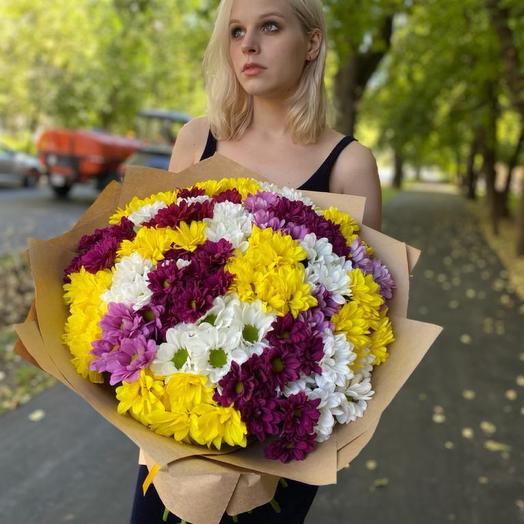Очень свежие хризантемы кустовые микс «Любимая»