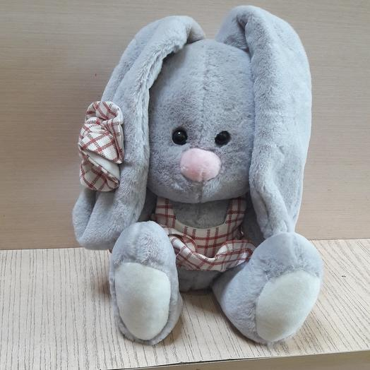 Bunny (in different clothes)