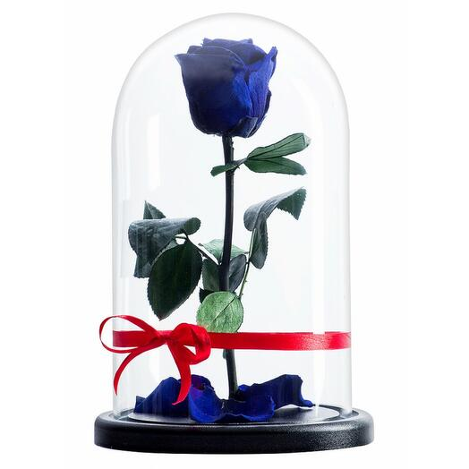 Роза в колбе премиум Синяя 27*15*6 см