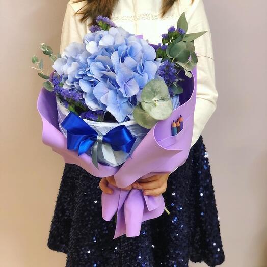 Гортензия голубая в пиджачке первоклассник
