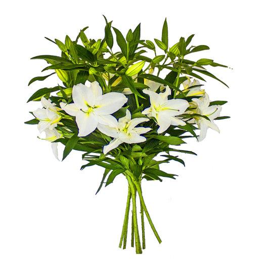 Лиля: букеты цветов на заказ Flowwow