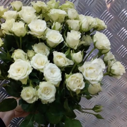 Кустовая белая роза