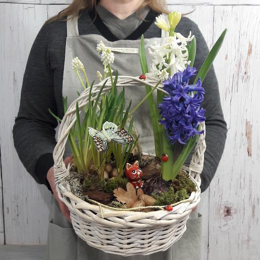 Корзина с гиацинтами и мускари: букеты цветов на заказ Flowwow