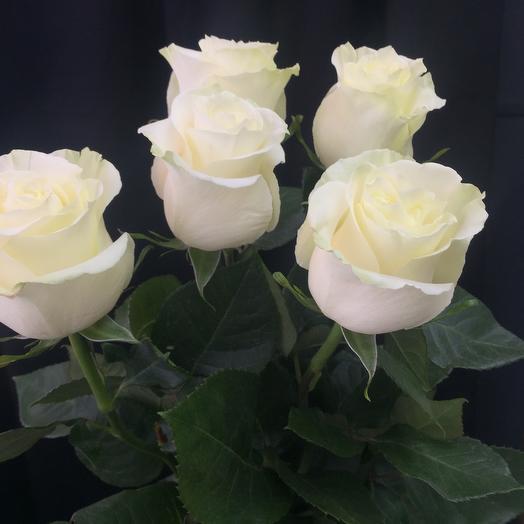Букет из пяти роз! Эквадор мондиаль