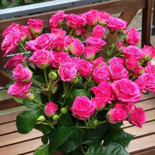 Букет из 10 розовых кустовых роз 60 см: букеты цветов на заказ Flowwow