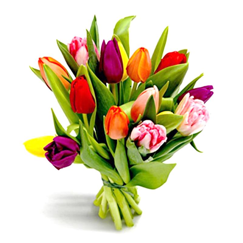 Букет из 13 разноцветных тюльпанов: букеты цветов на заказ Flowwow