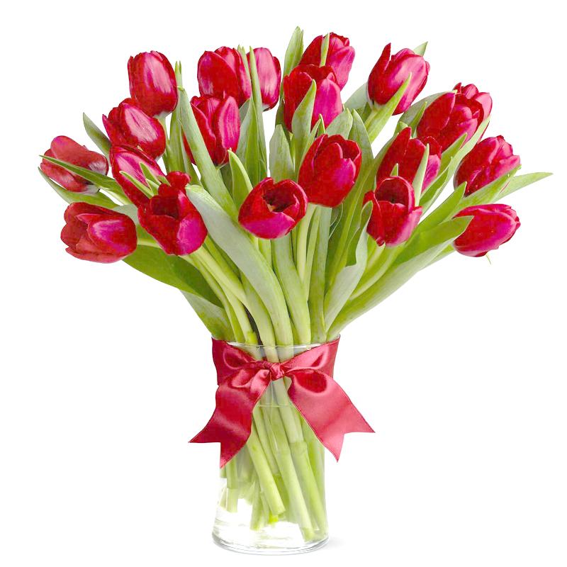 Букет из 17 красных тюльпанов: букеты цветов на заказ FlowWow