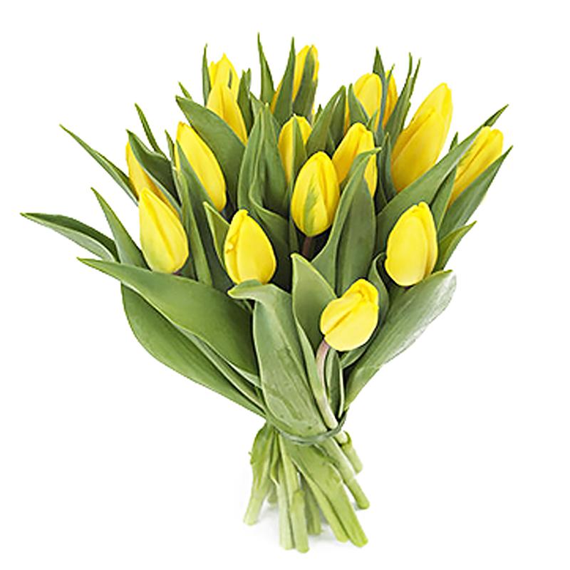 Букет из 17 желтых тюльпанов: букеты цветов на заказ FlowWow