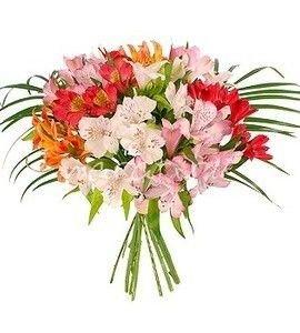 Заказ цветов с доставкой евпатория лучший подарок тельцу на 8 марта